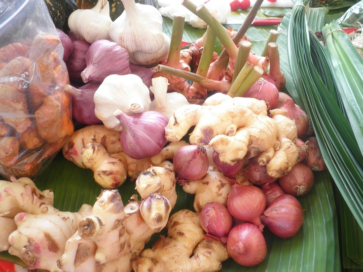garlic,ginger,galangal,fresh turmeric