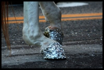 Glitter Pedicure for Horse Hooves (or it's a unicorn).