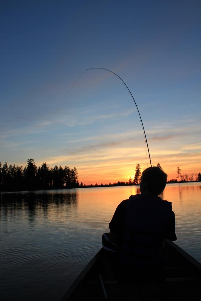 56 best backcountry hunting images on pinterest deer for Boundary waters fishing