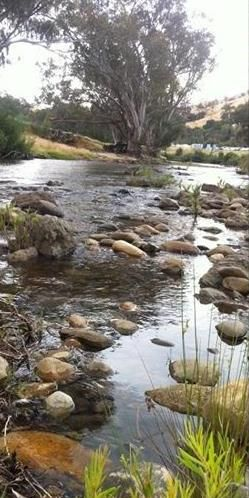 The Goobarragandra River Tumut NSW Australia