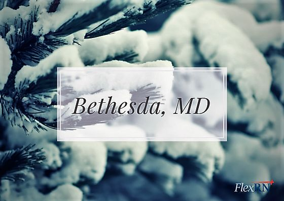 View our Current Assignment Openings in #BethesdaMD. Specialties include: Oncology, Peds, OR, and Critical Care. These contracts are all located at a leading medical center and are great for boosting your #resume. #nurses #nursing #nursingjobs