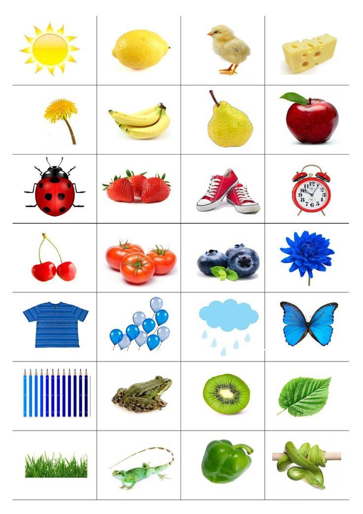 Obrázky podle barev - žlutá, červená, zelená, modrá, hnědá.