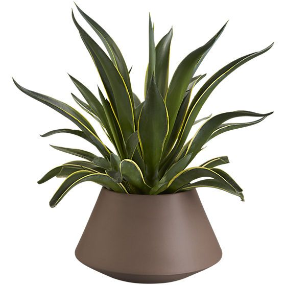 Roz Planter, large taupe | $30