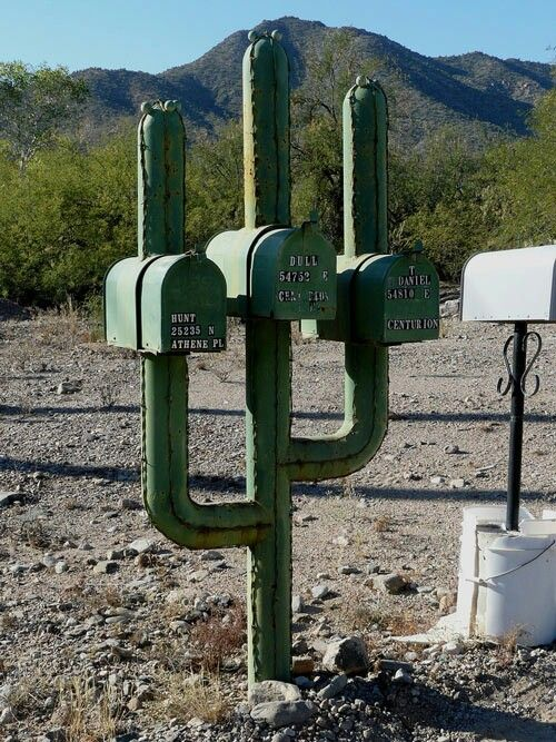Cactus Mailboxes---I want this!!!!