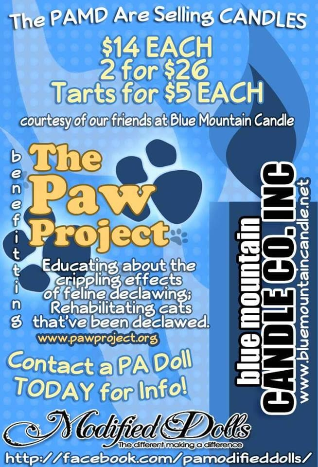 The Pennsylvania Modified Dolls are fundraising for The Paw Project. Contact your PA dolls for more information and to place your order. #ModifiedDolls #PAdolls #NonProfit #fundraising