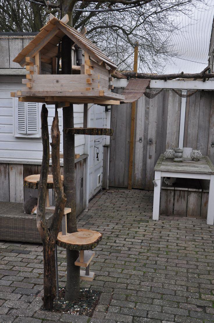 boomhuis voor katten in je tuin