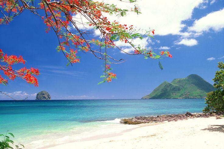 plages paradisiaques antilles