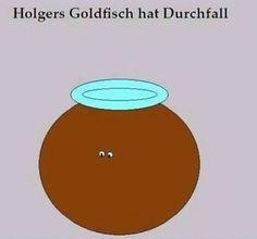 Holgers Goldfisch hat Durchfall.   @cinderella83