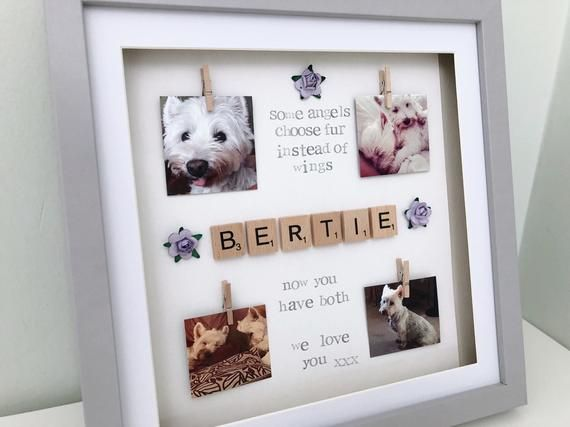 Dog Cat Pet Memorial Keepsake Frame With Sympathy Gift Pet Frame