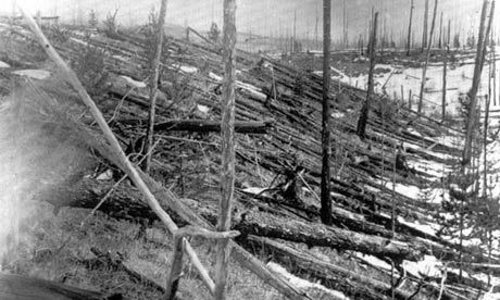 Trees blown flat in a radial pattern around epicenter of Tunguska, Siberia explosion, 1908