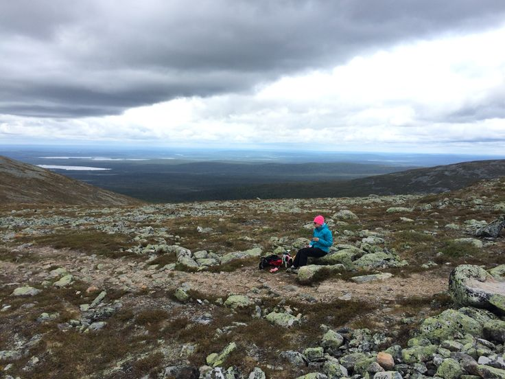 Pallastunturi. Lappi. Lappland. Finland