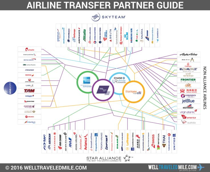Day 19 - Airline Alliances & Partners • The Art of Travel Hacking