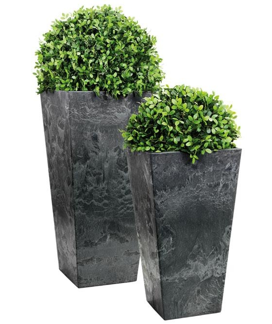 Some tall planters filled with greens to add some fresheness. Maybe lavendar too