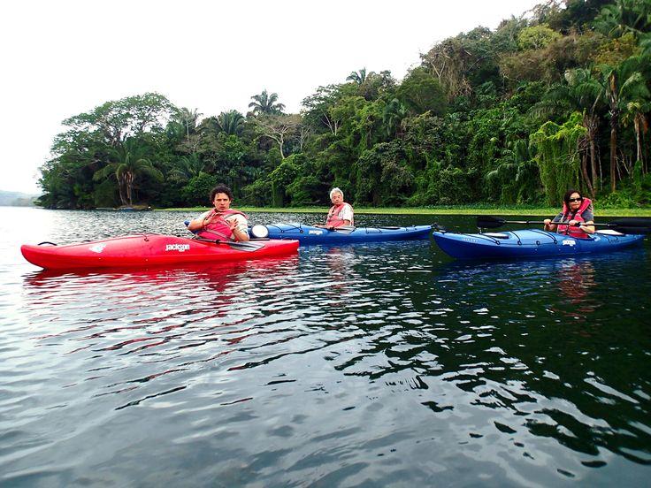 Kayaking the banks of the Gatun lake