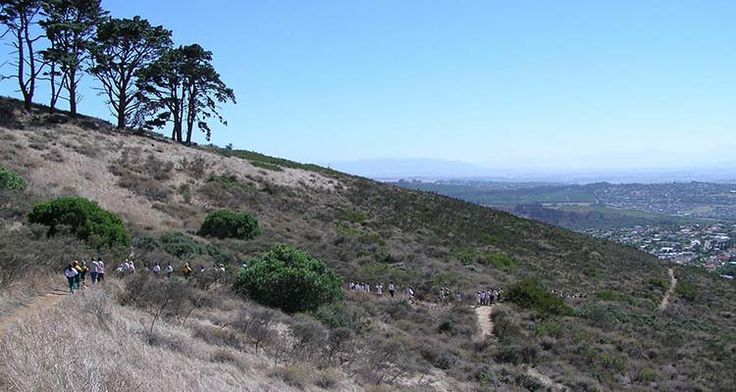 Botanical walk: Tygerberg Nature Reserve