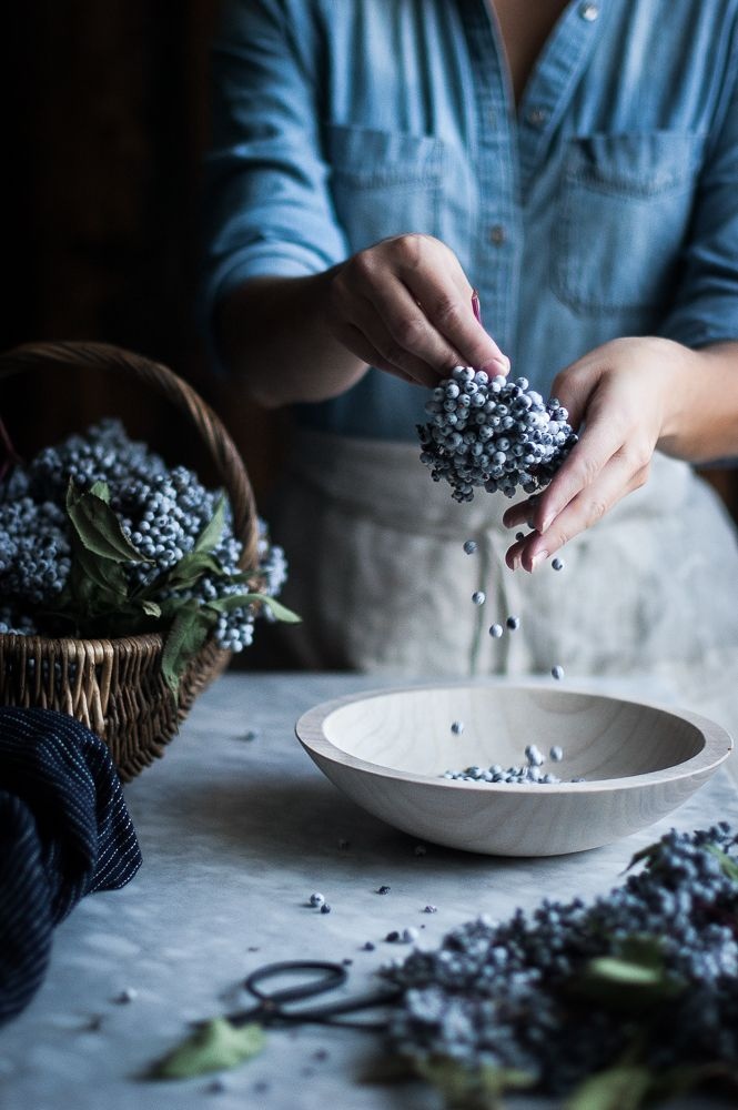 Foraging for Elderberries + Elderberry Syrup food  photography, food styling, learn food photography