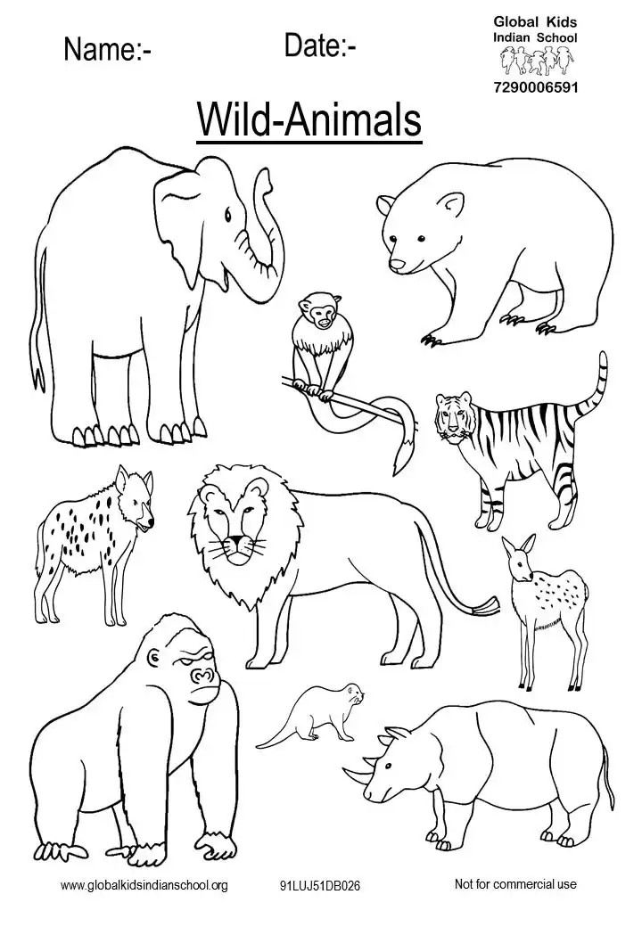Pin By Global Demos Unity School On Drawing Sheets Animals Wild Wild Animals Drawing Wild Animals Pictures