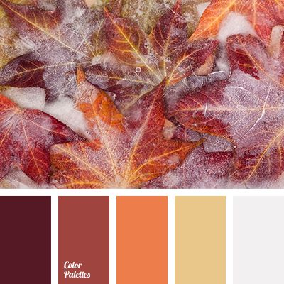 brown, burgundy, colors of orange leaves, deep orange, hoarfrost color, orange color, silver, winter color palette, winter color solution, winter in the city color, yellow color.