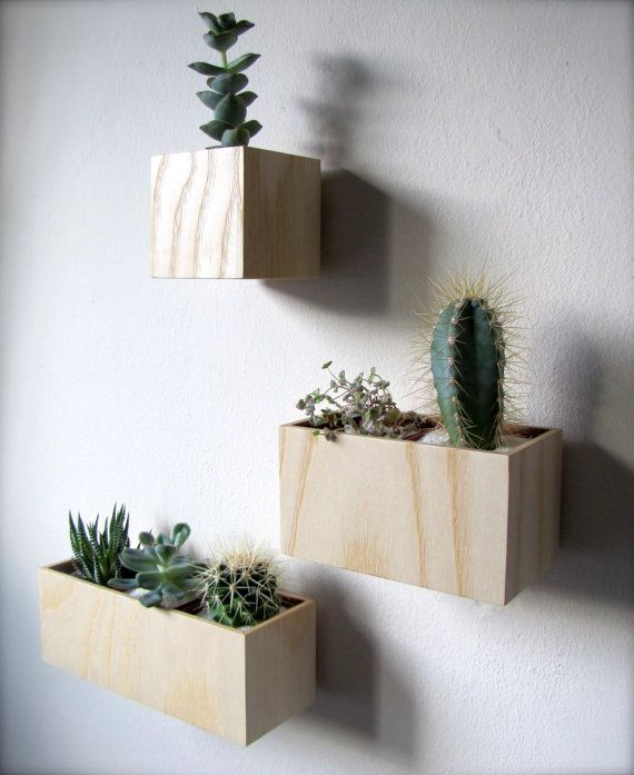 Set Of THREE Hanging Wall Plant Holders Made By Thewoodybeckers, $80.00