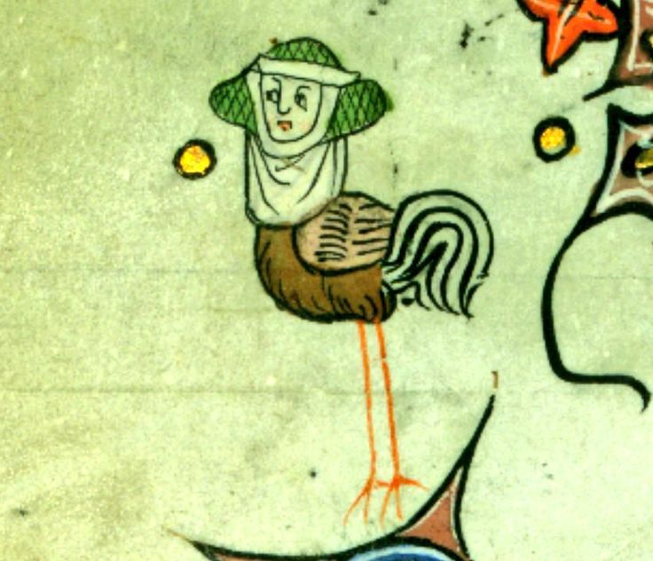 ‏@JohanOosterman If you hear a very mannered cock-a-doodle-doo, it's this noble chicken. @MedievalMss Walters90