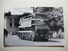 ENG271 - 1953 READING CORPORATION TROLLEYBUSES - BUS No171 Photo
