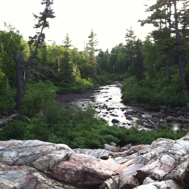 One of my favorite places in the world.... Black Spruce River-Ontario, Canada