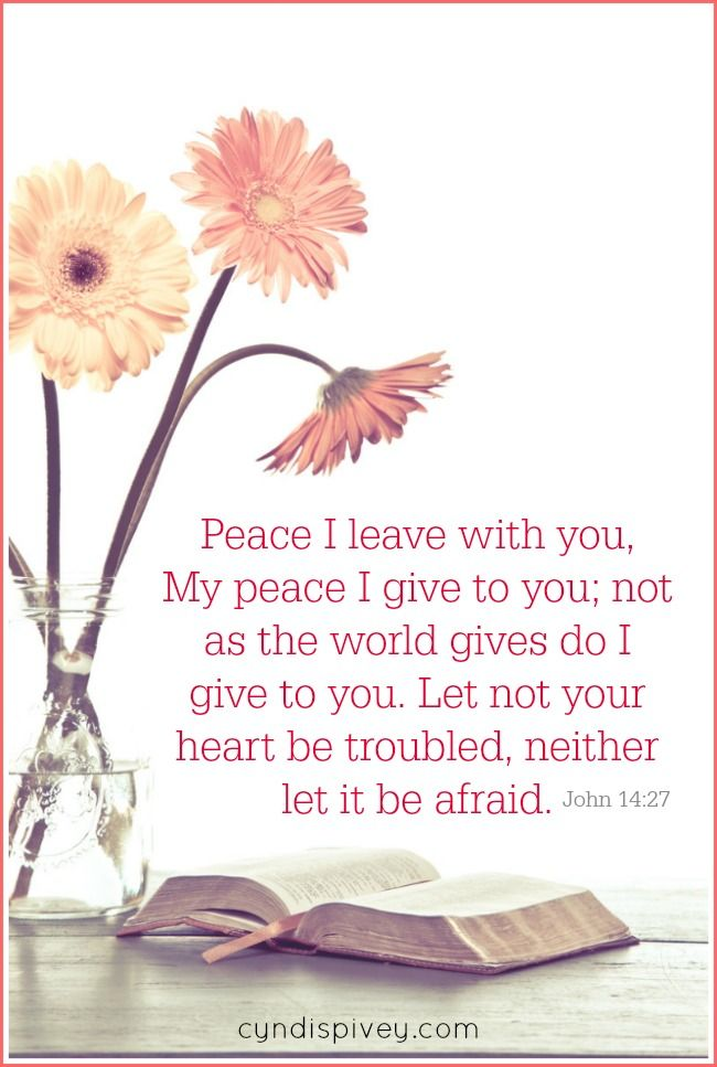 If you listen to the news at all, you know our world is lacking peace. Not only is our world lacking peace, but many of our homes are lacking peace. Christ says I will give you peace.