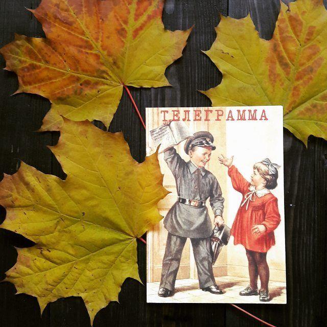 Осень рассылает телеграммы.  Весть о том, что лету вышел срок,  Мне принес, тихонько стукнув в раму,  Маленький оранжевый листок 🍂  #тчк #telegrafru #телеграф #телеграмма #мобильноеприложениетчк #мобильнаятелеграмматчк #открытка #сюрприз #подарок #праздник #поздравление #ретро #retro #винтаж #ссср #vintage #стиль #раритет #история #ностальгия #классика #старина #красиво #красота #дизайн #детство #советскийсоюз #память #прошлое