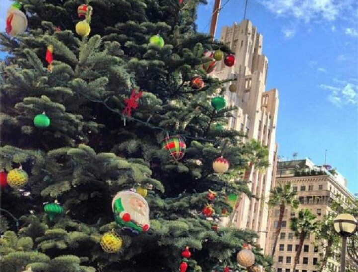 102 best Christmas images on Pinterest  Christmas time Los