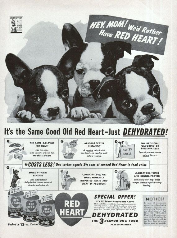Boston Terrier Dog Red Heart Dog Food Ad 1942 Puppies Black White