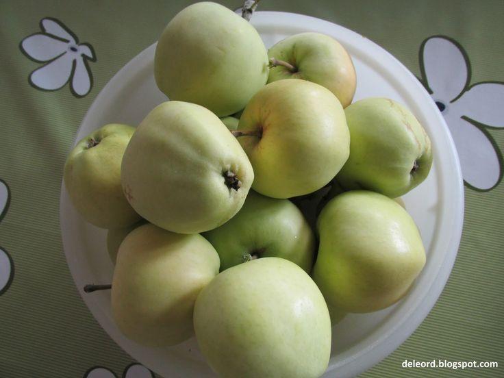 Det er ennå litt tidlig å plukke eplene, men jeg klarte ikke å vente. Jeg har gått og sett på dem i flere dager. Jo lysere gule de er, jo me...
