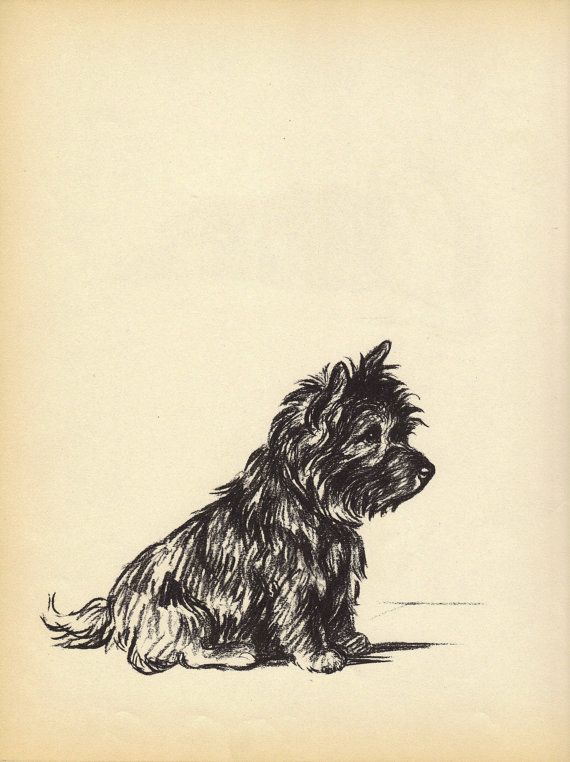 TERRIER 1930s Antique Dog Print Lucy Dawson Wall by HucksterHaven, $15.00