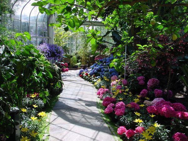 Seymour Botanical Conservatory |  Tacoma, Washington
