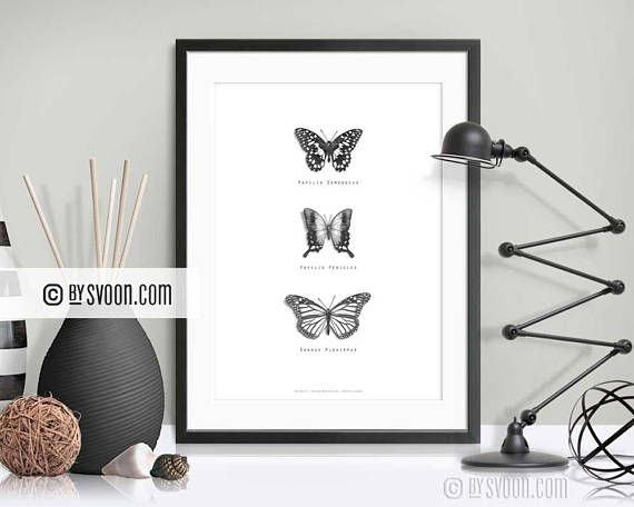 Butterflies Print Papilio Insect Poster Black & White Schmetterlinge im Bauch? Find these amazing handdrawn butterflies in my Etsy shop at www.bysvoon.etsy.com #freeshipping worldwide