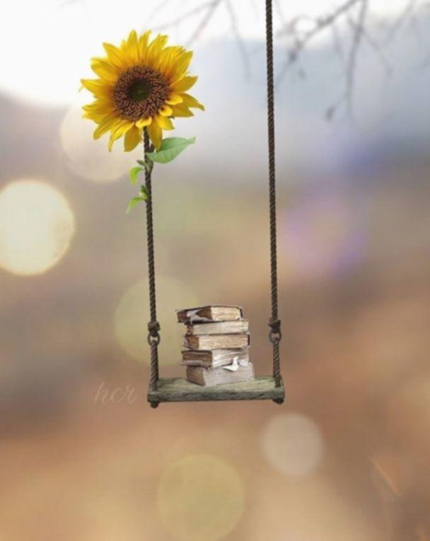 6 Cute Love Photography Beautiful Fotografi Seni Ide Menggambar Bunga Matahari