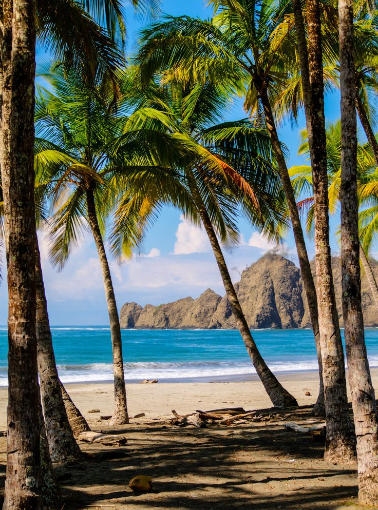Playa Carrillo - Costa Rica. I think it's time for a trip somewhere warm.