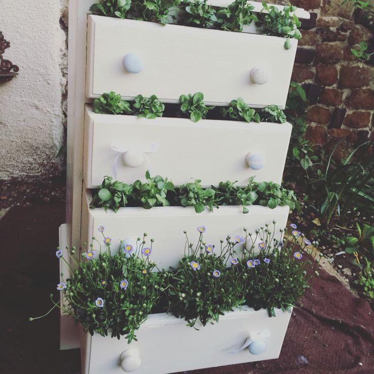 Cottage garden drawers