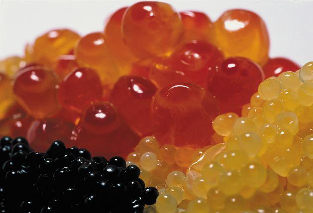 Gastronomia Molecular: o que é a Cozinha Modernista?