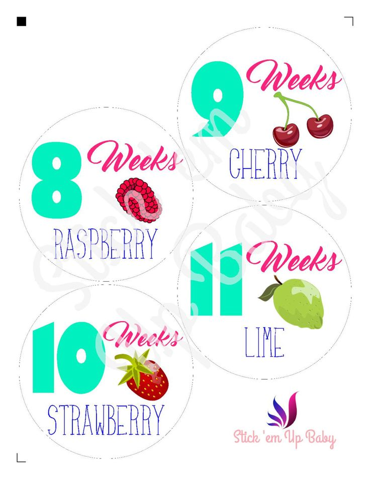 Weekly Pregnancy Tracking Stickers by StickEmUpBaby on Etsy https://www.etsy.com/listing/451469378/weekly-pregnancy-tracking-stickers