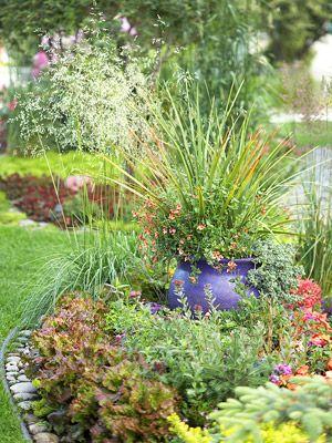 Make an Edible Landscape