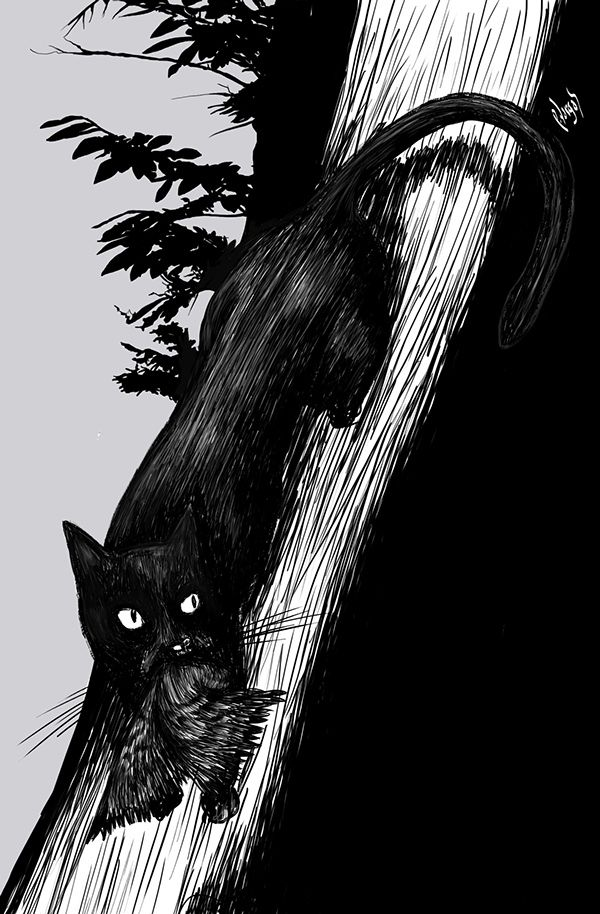 """Animals"" Illustrations by Patricio Vargas @pvargasac"
