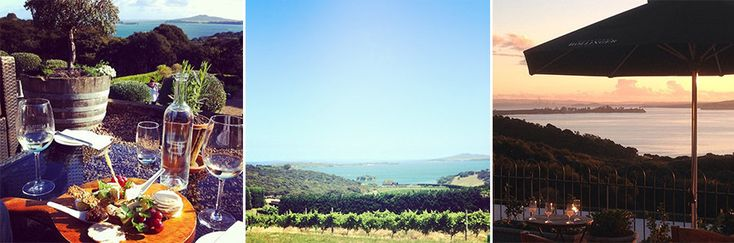 Mudbrick Winery | 18 Perfect Places To Go On A Date In Auckland