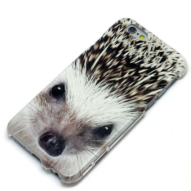 Best Phone Cases Images On Pinterest Galaxies Apples And Bb - This instagram account will satisfy your addiction for adorable hedgehogs