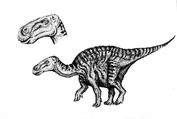dinosaurio con detalle de cabeza