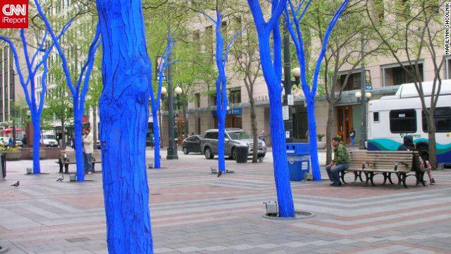 Billedresultat for streetart trees