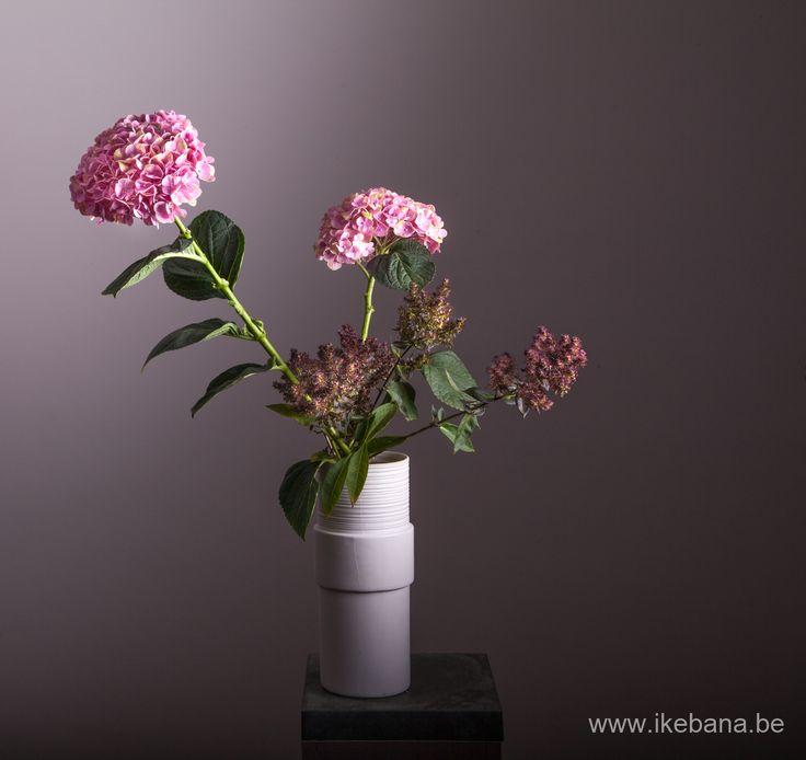 Best images about ikebana arrangements online courses