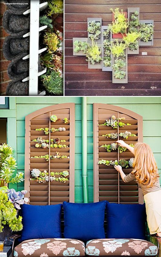 24 Creative Garden Container Ideas | Grow plants and herbs in a shutter! Great for small spaces or covering a wall.