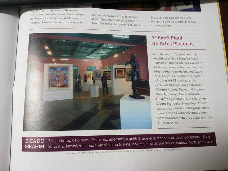 Expô Piauí 2015 de artes visuais  Curador Carlos Holanda