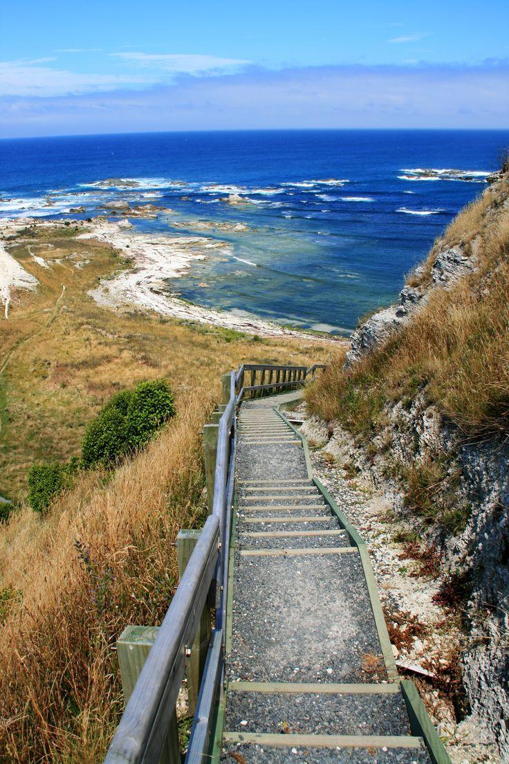 New Zealand Travel Inspiration - Kaikoura, Canterbury, South Island, New Zealand ~