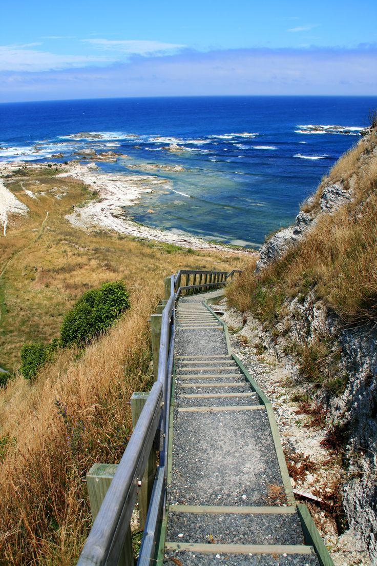 New Zealand Travel Inspiration - Kaikoura, Canterbury, South Island, New Zealand ~